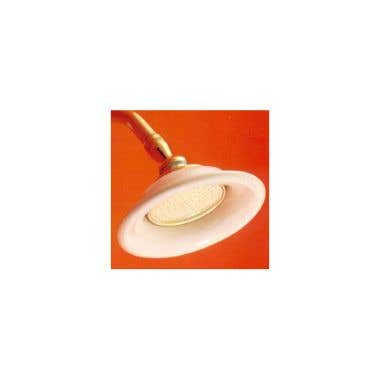 Strom Plumbing Porcelain and Supercoated Brass Showerhead